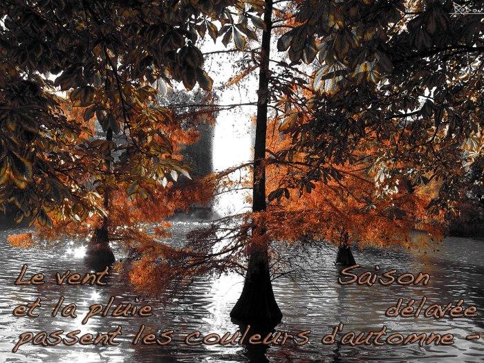 haiku_automne